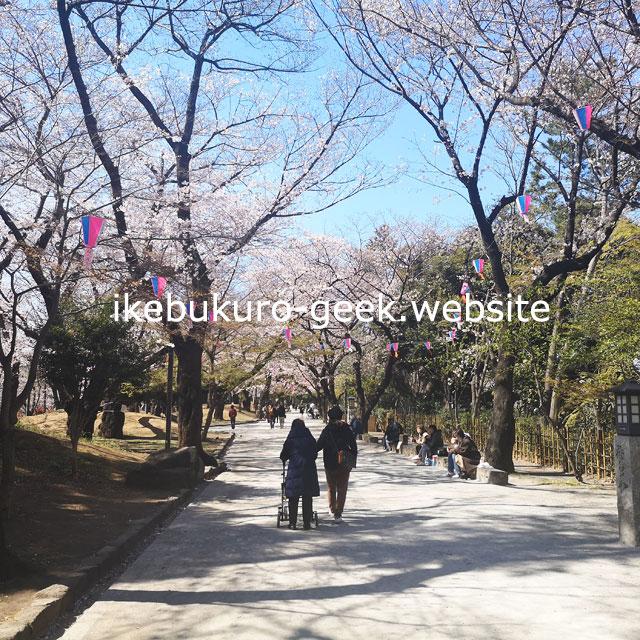 Cherry Blossoms(Sakura)Spots near Ikebukuro(Tokyo,Japan)