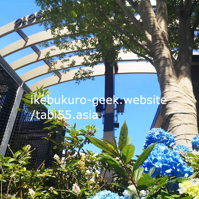 Hydrangea with Global Ring at Ikebukuro West Gate Park