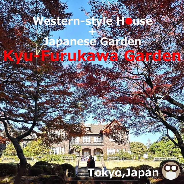 Kyu-Furukawa Garden!Western-style house and Japanese garden(Tokyo,Japan)