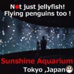 Jellyfish at Sunshine City Aquarium,Tokyo, Japan