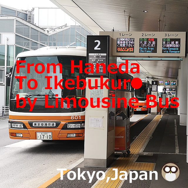 From Haneda Airport to Ikebukuro Station Access by【Limousine Bus】with Phots