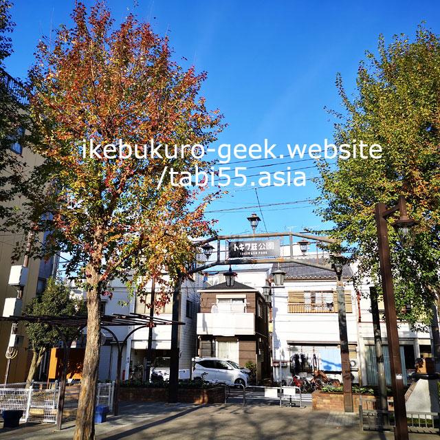 Tokiwa-So Manga Museum/Autumn Leaves near Ikebukuro【within 30min】