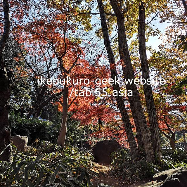 Asukayama Park/Autumn Leaves near Ikebukuro【within 30min】