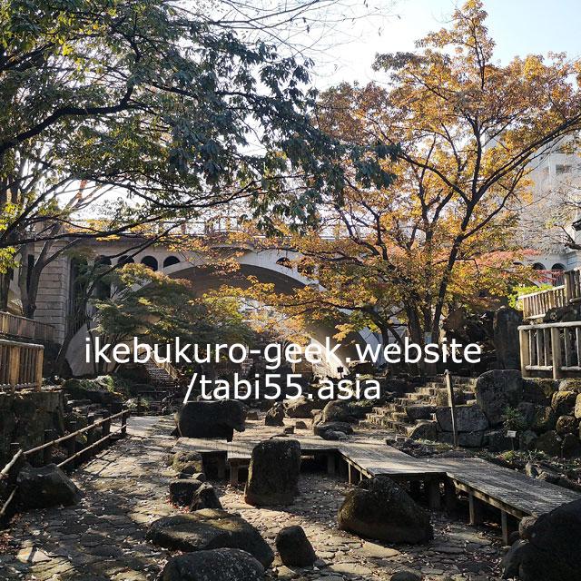 Otonashi Water Park/Autumn Leaves near Ikebukuro【within 30min】
