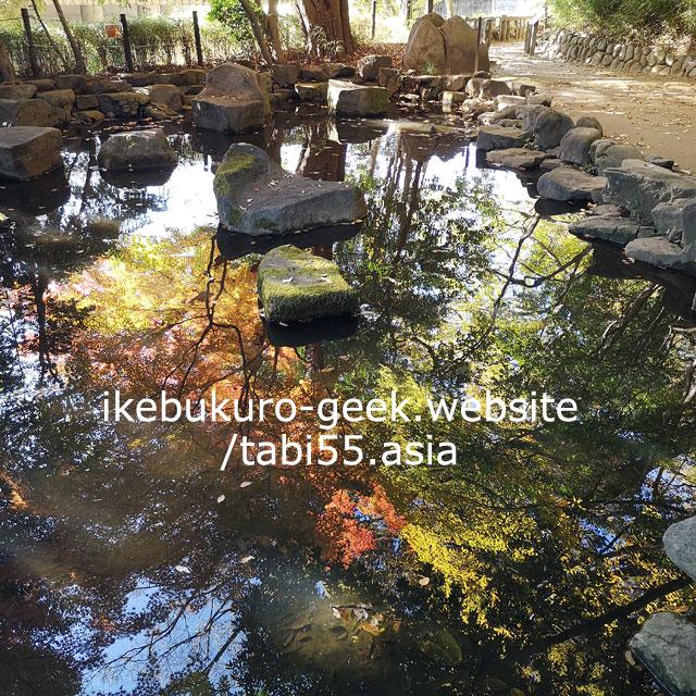 Tetsugaku-do Park/Autumn Leaves near Ikebukuro【within 30min】