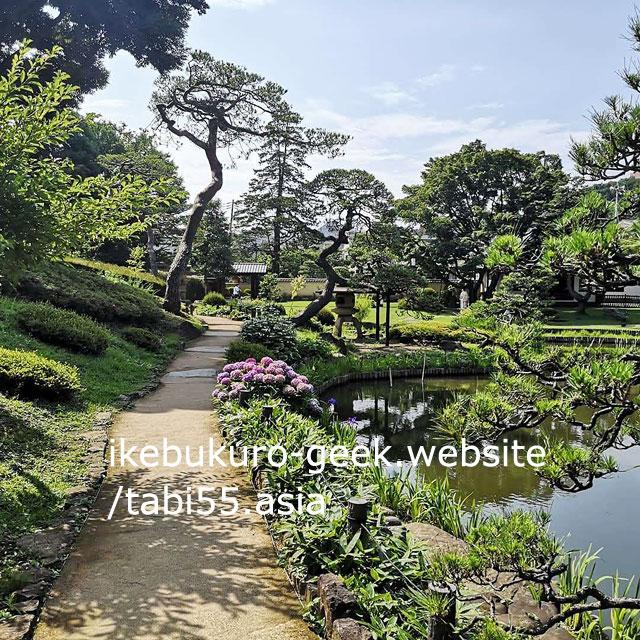 Hydrangea@Higo-Hosokawa Garden