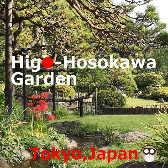 Higo-Hosokawa Garden!Take a walk around the pond,Tokyo