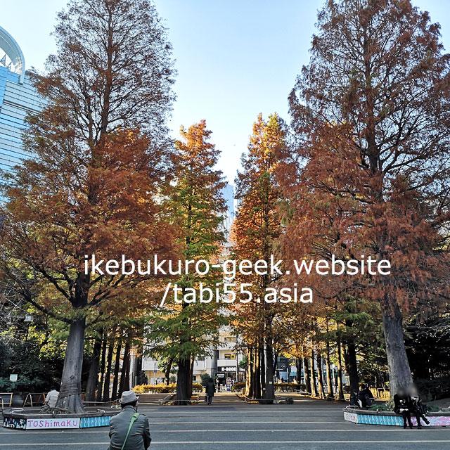 Higashi Ikebukuro Chuo Park/Autumn leaves in Ikebukuro