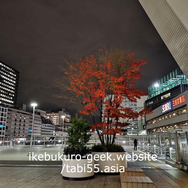 Daiya Gate Ikebukuro/Autumn leaves in Ikebukuro